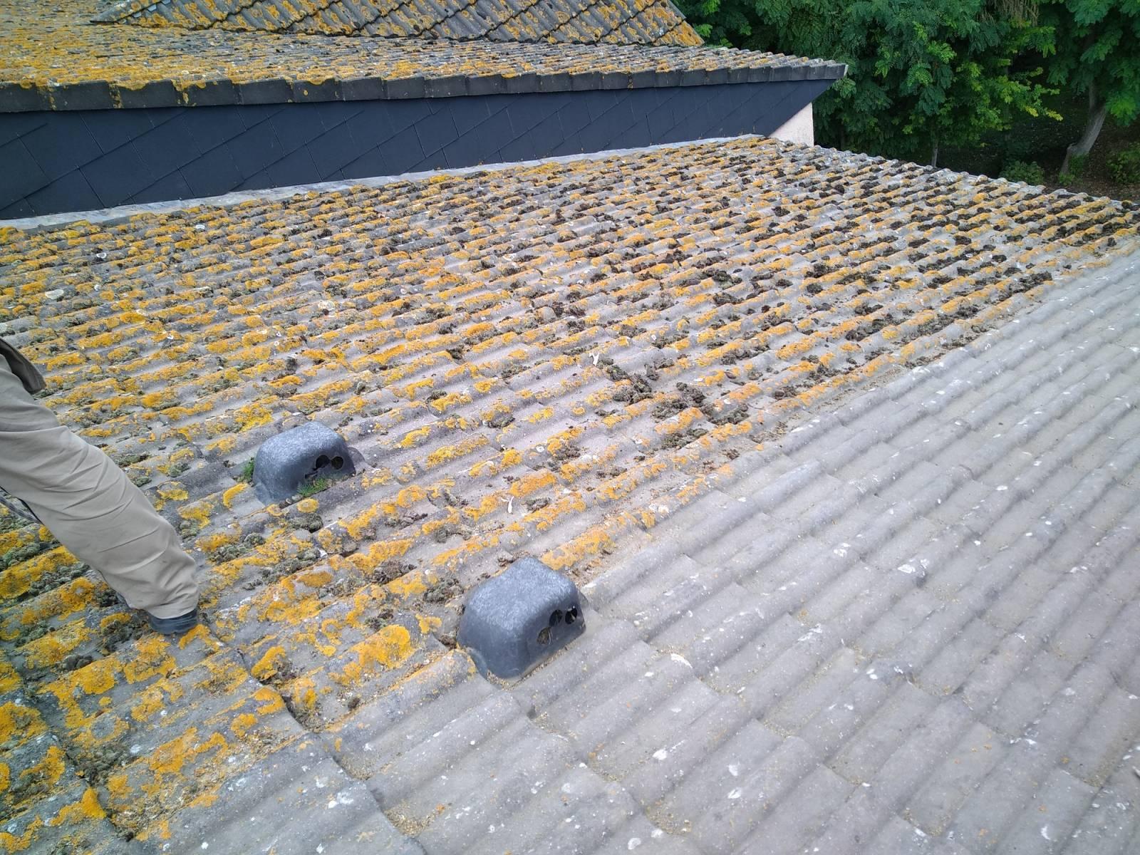 Nettoyer et démousser ma toiture en tuiles proche de Fécamp - Entreprise de toiture sur Le Havre ...